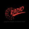 Radio Skonto 107.2