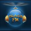 ПИЛОТ FM 101.2