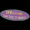 DYVS 1233