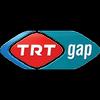 Gap TV