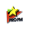 Pro FM Hits