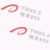 Anhui Music Radio 89.5