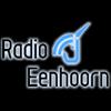 Radio Eenhoorn 107.5