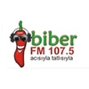 Biber FM 107.5 radio online
