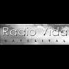 Radio Vida Satelital 91.1