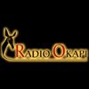 Radio Okapi 103.5