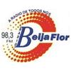 Beija Flor FM 98.3 radio online