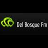 Del Bosque  FM 100.5