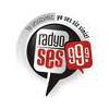 Mersin Radyo Ses 99.9