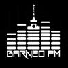 Barneo Fm radio online