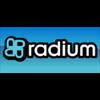 Radium FM 91.3