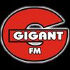 Gigant FM 104.7 online television