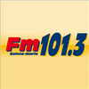 FM 101.3