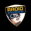 Radio Engiadina 93.0