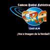 Cadena Radial Autentica 1260