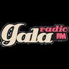 Гала Радіо 100 FM 100.0