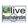 Radio Boarnsterstim 105.6