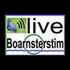 Radio Boarnsterstim 105.6 radio online
