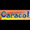 Caracol Radio 105.1 radio online