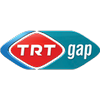 Gap TV radio online