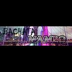 bachatamambo.net