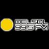 FM Del Sol 99.5 radio online
