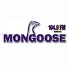 Mongoose FM 104.9 radio online