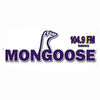 Mongoose FM 104.9 online television