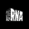 RNA 96.6