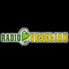 Radio Veseljak 94.9 online television