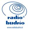 Radio Budrio 94.15