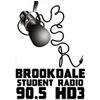 Brookdale Student Radio 90.5 online television