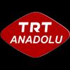 Anadolu TV radio online
