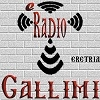 Radio Gallimi