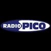 Radio Pico 106.4 online television