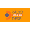 Radio Despi 107.1