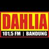 Radio Dahlia 101.5