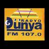 Radyo Dunya 107.0 radio online