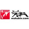 Wuhu Traffic & Economics Radio 96.3