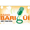 Rádio Bariguí AM 1560 radio online