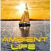 Ambient Life Radio online television