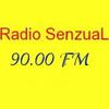 Radio Senzual FM 90.00 radio online