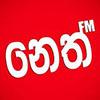 Neth FM 105.9