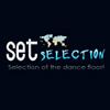 SetSelection