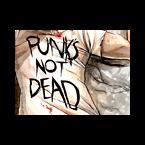 myRadio.ua Punk radio online